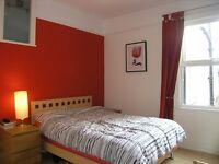 Stunning 1 Double Bedroom Flat in Raynes Park with Private Courtyard Garden 5 Minute Walk To Station
