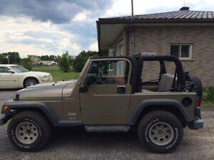 2004 Jeep TJ Sport VUS