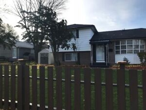 Solid 4 Bedroom Home in Pickering Beaches