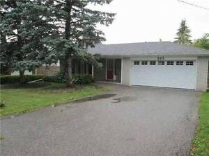 Extremely Clean & Rare Walkout Basement in Central Newmarket London Ontario image 1