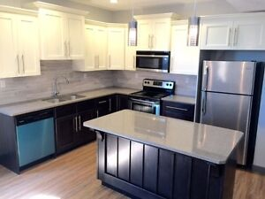 New Beautifully Finished Two Bedroom Suite In Timberlands