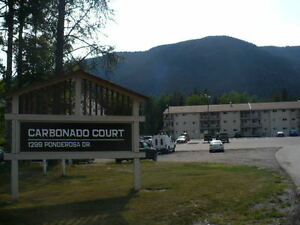 1 Bedroom Condo For Rent in Sparwood!
