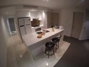 New Meriton, Looking for 1 Female, River view, Brisbane CBD Brisbane City Brisbane North West Preview