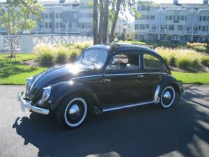 1957 Beetle with Oval Back Window