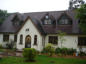 2 spacious double rooms in large house on edge of Haldon Forest, shared kitchen, parking, garden