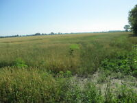 GREAT 33.7 ACRE STARTER FARM OR BUMP UP EXISTING ACRES