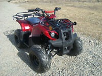 125cc ATV Fully automatic WITH REVERSE. OFFROAD MOTORSPORTS!