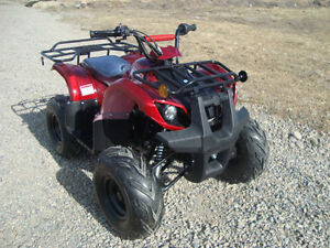 110cc ATV Fully automatic WITH REVERSE. OFFROAD MOTORSPORTS!