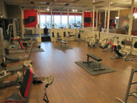 FINEST PERSONAL TRAINING STUDIO IN WINDSOR