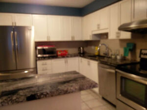 Spacious Rooms Near Fairview Mall after Dec 19 Kitchener / Waterloo Kitchener Area image 4