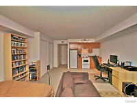 Luxurious 1 1/2 studio Downtown Montreal - Available IMMEDIATELY