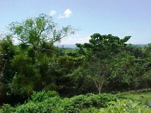 terrain Costa rica