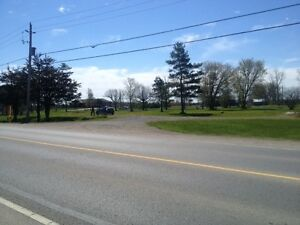 VACANT LAND IN ODESSA-10 MIN FROM KINGSTON! Kingston Kingston Area image 10