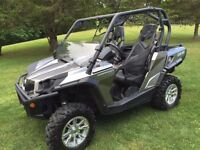 Turn heads with this ATV!