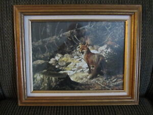 """Picture of a Red Fox in Woodland Scene 16"""" x 12 1/2"""""""