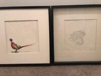 2 paintings - Highland Cow & Pheasant £20 each