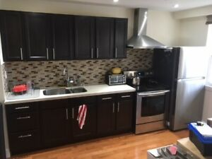 ENTIRE KITCHEN - Cabinets, Sink, Quartz Top, Fridge, Stove, Fan