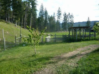 5 ACRES and a wonderful 2 storey home. Please see below.