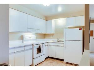 Attention First Timers!!! Great Condo ONLY $199,900 Kitchener / Waterloo Kitchener Area image 5