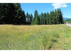 Large serviced lots for sale