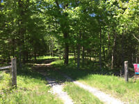 3 Acres, with well & hydro, year round road, Havelock