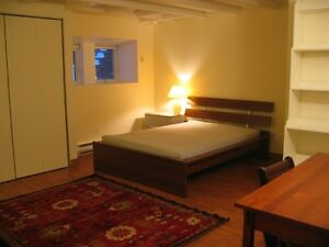 Semi-basement apartment in St Henri *PERFECT FOR FEMALE STUDENTS