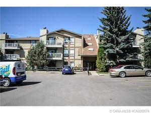 +++UPDATED CONDO LOCATED IN MATURE CLEARVIEW MEADOWS+++