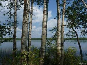 Lakefront property with deck and dock and possibilities - many!!