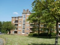 Lovely 3 BR Flat in Putney. Close to river and shops.