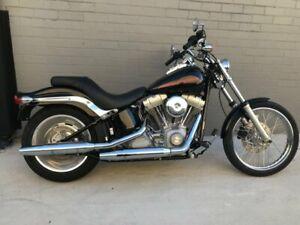 2010 Harley-Davidson SOFTAIL STANDARD 1584 EFI (FXSTI) Road Bike 1584cc Tempe Marrickville Area Preview
