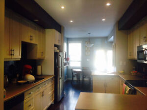 Beautiful House Near Locke Street (6-8 month sublease from Sep)
