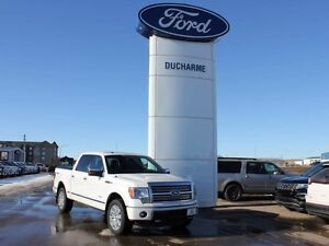 2011 Ford F-150 Platinum 4x4, Learher, Roof, Nav