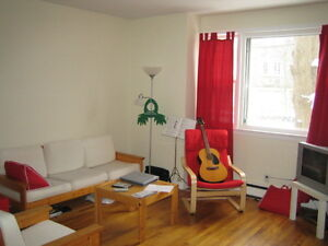 Great 1 Bedroom Across from Dal! Available MAY!
