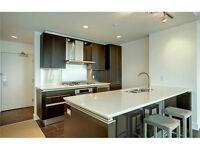 LARGE 1 bedroom+ den +1.5 bath high end downtown condo - GREAT