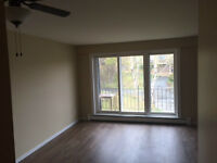 Newly Renovated 1 Bedroom Apartment in Clayton Park!!! June 1st…