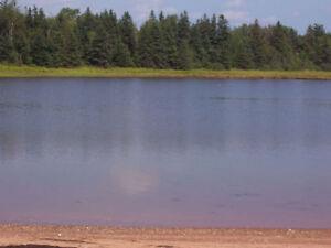 Waterfront Land for Sale – Wood Islands, Prince Edward Island