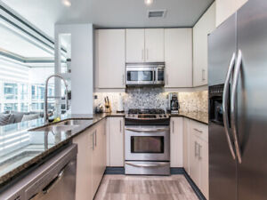 furnished luxury apartment right in the heart of Downtown