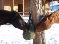 WIN A SET OF PURELY PONIES SLOW FEED HAY NETS!!