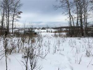 Very private setting for your new home/cabin on 20 ac of land!