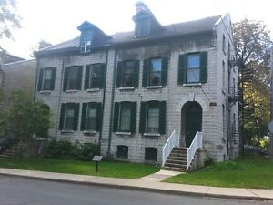 CUTE & COZY BACHELOR IN GREAT DOWNTOWN LOCATION! - 134-7 Earl St