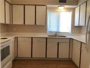 Completely Renovated 2 BDRM FOR RENT!!!!