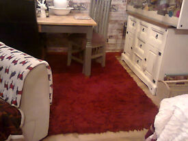 large red shaggy rug