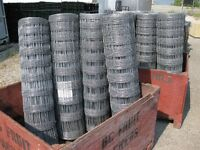 Hot Dipped Galvinized Wire Fencing