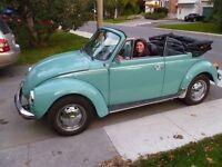 classic vw beetle, 1976