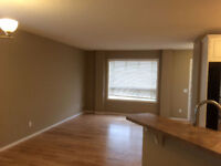 Affordable residential painting