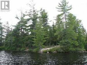 Private island on mostly crown land lake Kawartha Lakes Peterborough Area image 5
