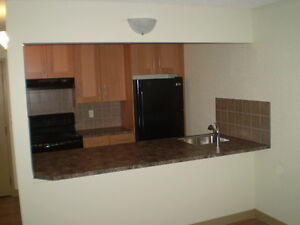 Newly Renovated DOWNTOWN – (1) Bdr. Apt. at 221-6 Ave SE