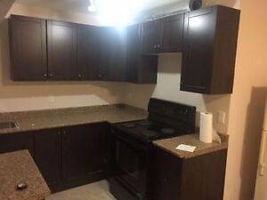 Beautiful Two Bedroom basement for rent in NE Calgary