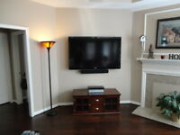 Dr. Sat SmartHome Services:  TV mounting, Network & Home theatre