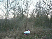 Land Located in the heart of Greensville